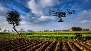 dronefarmer
